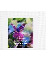Butterfy Still Canvas Print 24x20