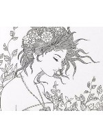 lady of the land Canvas Print 20x16