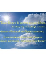 Excellence Canvas Print 30x24