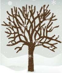 Winter Tree Canvas Print 8x10