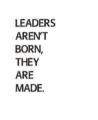 LEADERS Canvas Print 11x14