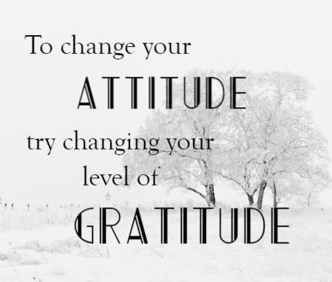 Gratitude Canvas Print 24x20