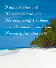 Sorry for crush quotes Canvas Print 24x30