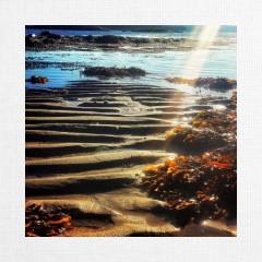 Canvas Print 12x12