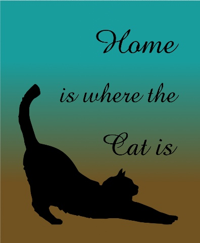 Home is where the cat is Canvas Print 16x20