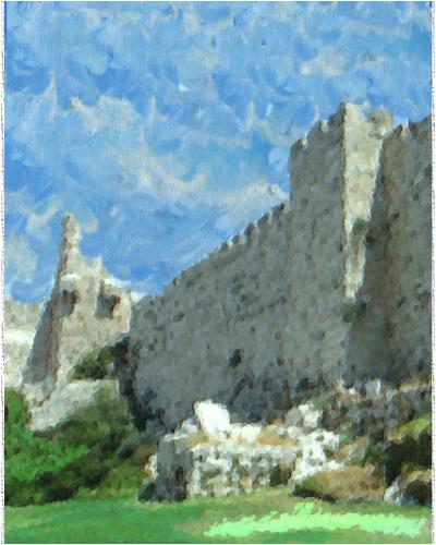 Canvas Print 16x20