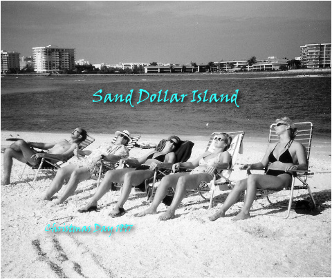 Sand Dollar Island Final! Canvas Print 10x8