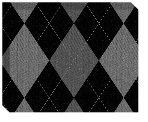 Gray Argyle Pattern Canvas Print 20x16