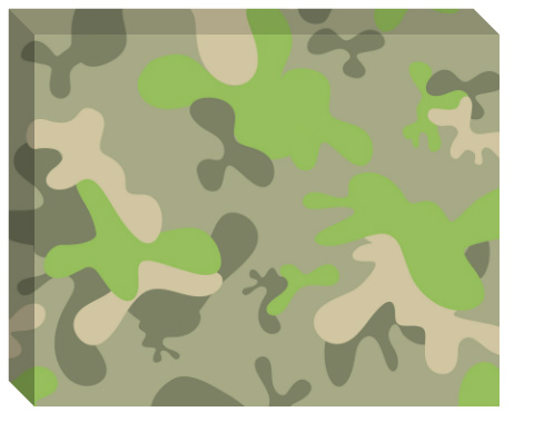 Fun Camo Canvas Print 20x16