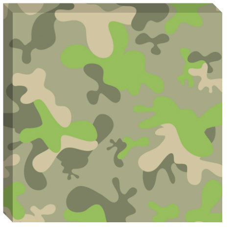 Fun Camo Canvas Print 24x24