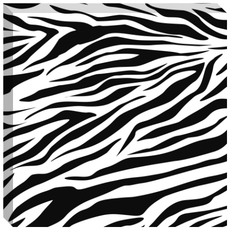 Zebra Stripes Canvas Print 24x24