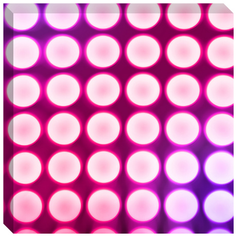 Pink Concert Lights Canvas Print 24x24