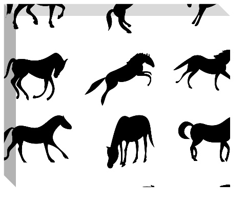 Horses Canvas Print 20x16