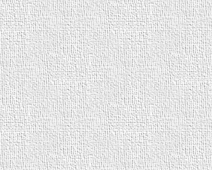 Canvas Print 20x16