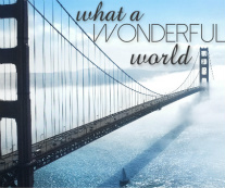 what a wonderful world Canvas Print 24x20