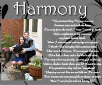 Harmony Canvas Print 24x20