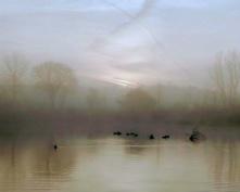Misty Morning Canvas Print 30x24