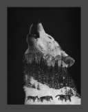 Canvas Print 11x14