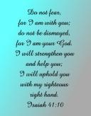 Isaiah 41:10 Canvas Print 11x14