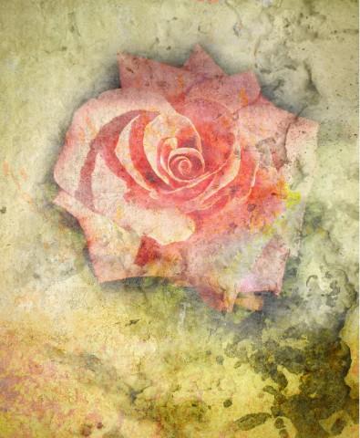 Design #48566 (Background) Canvas Print 11x14