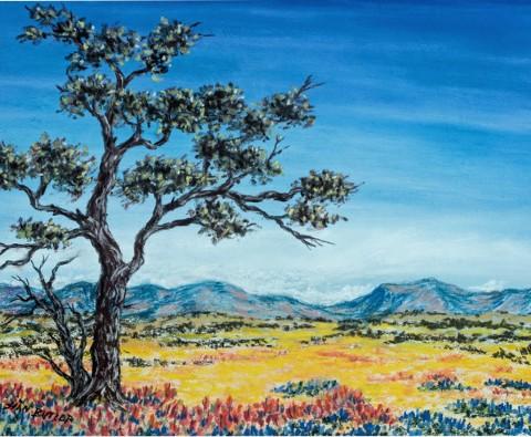 Design #49839 (Paint) Canvas Print 14x11