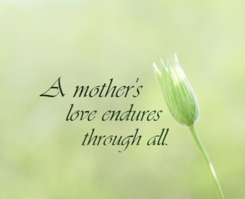 Mother's day canvas 14 x 11 Custom Canvas Print XPress