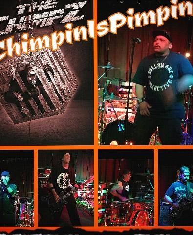 custom chimpz collage Canvas Print 11x14