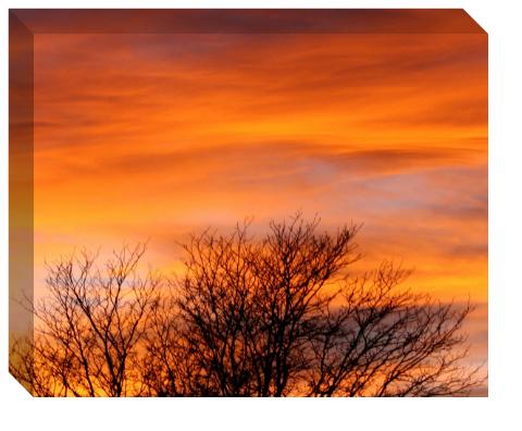 Fall Sunset Canvas Print 20x16