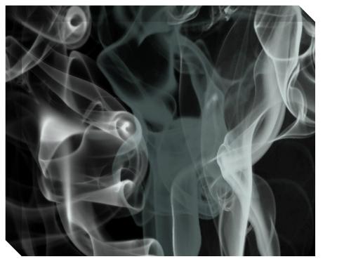 Black Smoke Canvas Print 20x16