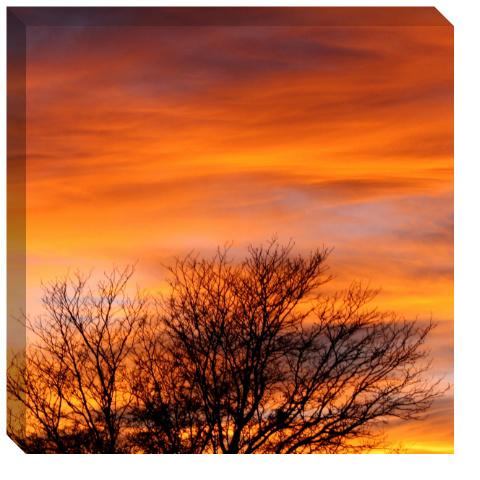 Fall Sunset Canvas Print 24x24