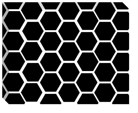 Black Honeycomb Canvas Print 20x16
