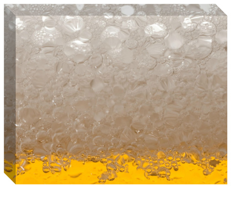 Beer Suds Canvas Print 20x16