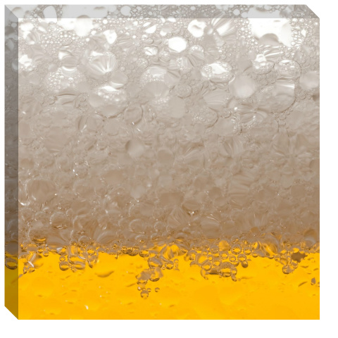 Beer Suds Canvas Print 24x24