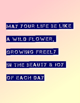 May Your Life be Like a Wildflower Canvas Print 11x14